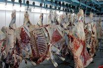 تشکیل زنجیرههای تولید شیر و گوشت قرمز با هدف کنترل و تنظیم بازار