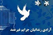 طرح بهاریه ویژه آزادی زندانیان جرائم غیر عمد در یزد اجرا می شود