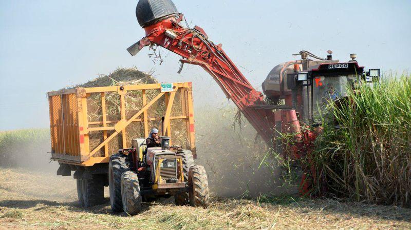 شرکت کشت و صنعت نیشکر امیرکبیر به رکورد تولید 95 هزار تن شکر خام دست یافت