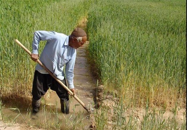 جذب 82 درصد از تسهیلات خط اعتباری مکانیزاسیون کشاورزی خراسان رضوی در سال گذشته