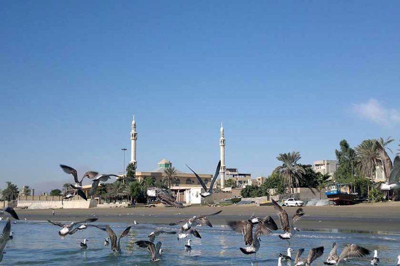 طرح بومگردی در ساحل سورو بندرعباس اجرا می شود