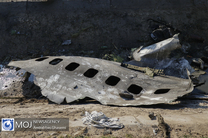 اقدامات آمریکا سبب شهادت مسافران هواپیمای اوکراین شد/ اگر انگلیس از رفتارهای خود مراقبت نکند به سرنوشت سفارت آمریکا دچار می شود