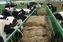 استفاده از بقایای تولیدات کشاورزی در تغذیه دام