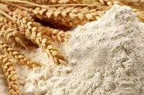 ۵۰۰ میلیون ریال آرد قاچاق در کبودرآهنگ کشف شد