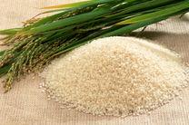 برنج های خارجی ثبت سفارش شده هم اجازه واردات ندارند