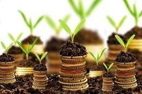 شرکتهای دانشبنیان تسهیلات دریافت می کنند/ نرخ سود تسهیلات شرکت های دانش بنیان