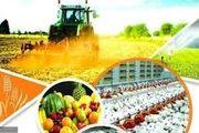 موانع بازگشت به اقتصاد کشاورزی