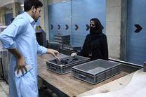 بازگشت کارکنان زن فرودگاه کابل به محل کار +عکس