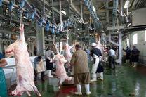 کشتارگاه تبریز برای عید قربان طرح ویژه اجرا میکند