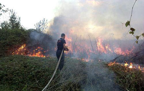۱۲ مـورد عملیات امداد رسانی توسط آتش نشانان شهر رشت/پاسخگوی ۴۲۵ تماس شهروندان