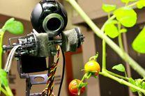 روبات باغبان طراحی شد