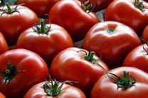 کاهش قیمت گوجه فرنگی و پیاز در میادین میوه و تره بار