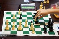 افشین تهرانی سرپرست دبیری فدراسیون شطرنج شد