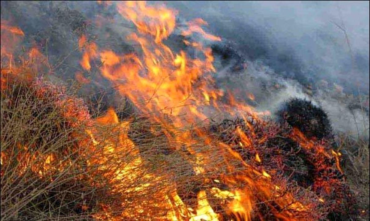 هشدار وقوع آتش سوزی در مراتع و جنگلها با گرمتر شدن هوا