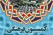 نمایندگان در شوراهای سهگانه صدور پروانه عضو میشوند / بررسی شاخصهای سینمایی اسلامی قابل رقابت با هالیوود
