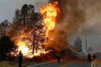 ۱۵۰۰ مترمربع از پارک ملی گلستان در آتش سوخت