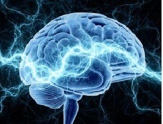 ورزش از پیری مغز جلوگیری میکند