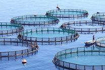 سرمایه گذاری در خلیج فارس و دریای عمان زیر پوشش بیمه قرار گیرد