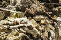 خسارت ۸۰۰ میلیارد تومانی زلزله به کشاورزی کرمانشاه