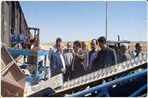 مزایای حمل ریلی نهادههای دامی به استان