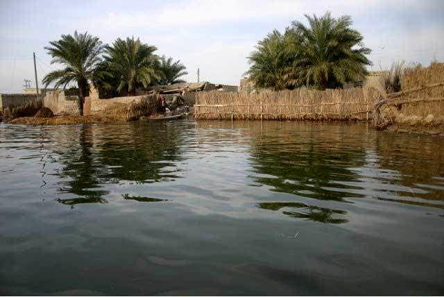 سطح آب تالاب جازموریان افزایش یافت