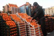 تولید ٢٢ میلیون تن محصولات باغبانى/تسهیلات بدون محدودیت براى صنایع بسته بندى