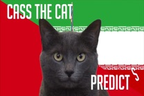 پیش بینی گربه پیشگو روسی از بازی ایران و اسپانیا