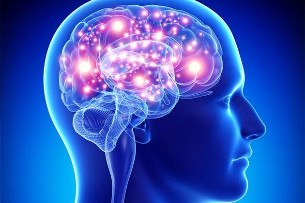 عملکرد مغز با اندکی ورزش بهبود می یابد