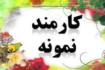 قاضی و کارمندان نمونه دادگستری استان خوزستان معرفی شدند