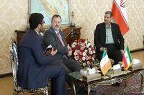 تاکید رییس مجلس سنای ایرلند بر گسترش روابط با ایران