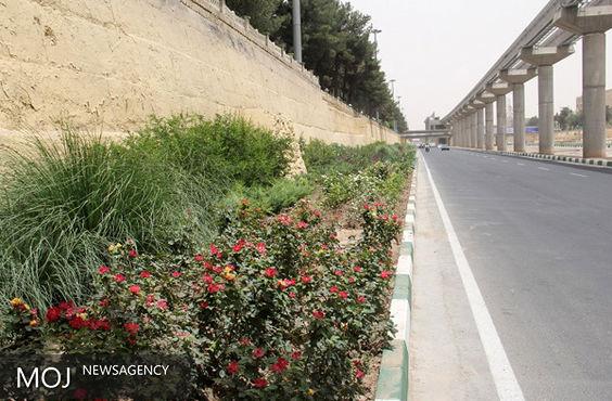 طرح دیوار سبز در رودخانه قم اجرا می شود
