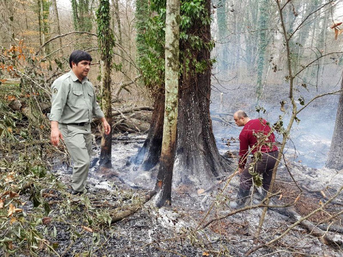 توضیح رییس مرکز کنترل حریق وزارت دفاع درباره آتش سوزی جنگلهای گلستان