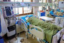 افزایش شمار بستری شدگان بیماران کرونایی در مازندران
