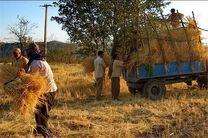بخشودگی سود و جرایم تسهیلات کمتر از ۱۰۰ میلیون تومان مشتریان بانک کشاورزی