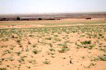 برخورد با متجاوزان عرصههای منابع طبیعی در اولویت پیگیری است