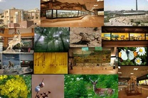 در طرح اقدام ملی حفاظت از تنوع زیستی بازنگری می شود