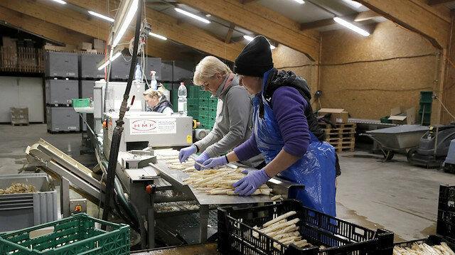 ویروس کرونا باعث افزایش نرخ بیکاری در سوئیس خواهد شد