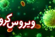 54 ابتلای جدید به ویروس کرونا در کاشان / تعدادکل بستری شده ها 290 بیمار