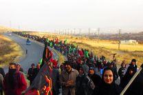 بیش از ۱۷ هزار هرمزگانی برای حضور در راهپیمایی اربعین نام نویسی کردند
