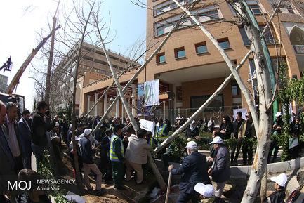 احیای درختان خیابان ولیعصر (عج)