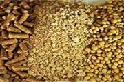 معدوم سازی بیش از 25 تن کنجاله سویای تقلبی در شهرستان هرند