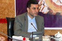 مرغ منجمد با قیمت ۹ هزار و پانصد تومان در شهرستانهای استان توزیع میشود
