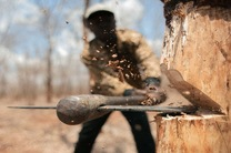 کشف 2 میلیارد ریال چوب قاچاق