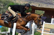 برگزاری نخستین کارگاه آموزشی آشنایی با اسب و سوارکاری در رشت