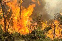 کاهش 86 درصدی آتش سوزی مراتع استان اصفهان