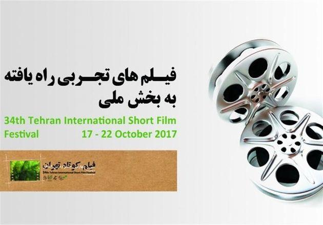 آثار تجربی جشنواره فیلم کوتاه تهران اعلام شد