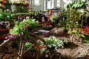 پانزدهمین نمایشگاه فصلی گل و گیاه تهران افتتاح شد