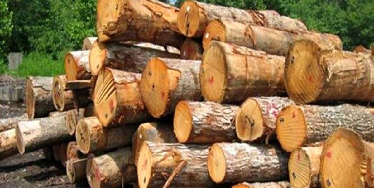 ۶ تن چوب جنگلی قاچاق در گلوگاه کشف و ضبط شد