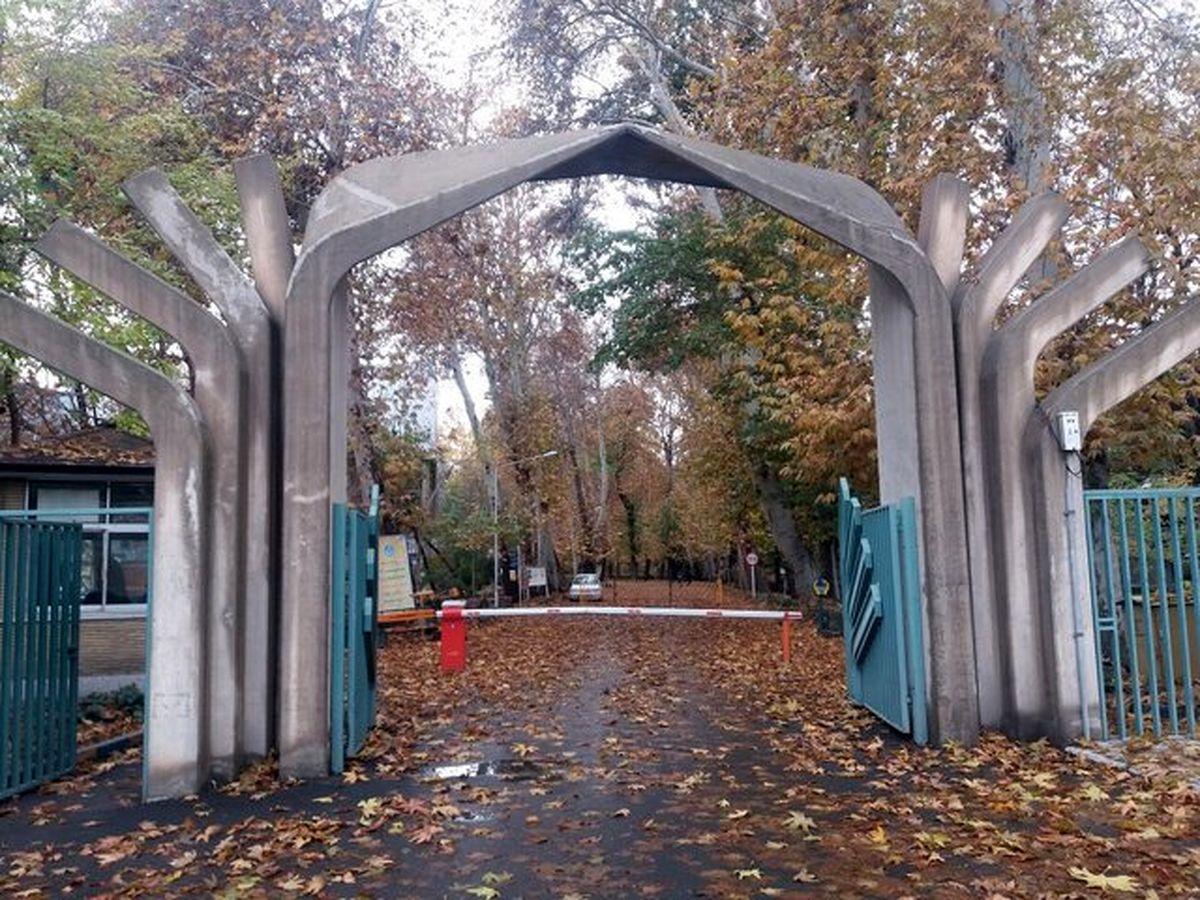 هنوز آمار دقیقی از درختان قطع شده پردیس کشاورزی دانشگاه تهران در کرج در دسترس نیست