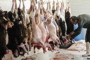 گوشت قربانی چه مدت در یخچال نگهداری شود؟